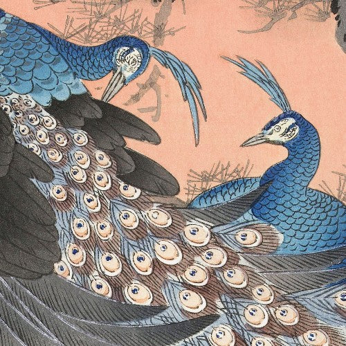 Ohara-Koson-two -peacocks | Free USA Shipping | www.wallart.biz