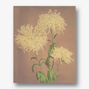 Ogawa Kazumasa - Yellow Chrysanthemum | Free USA Shipping| www.wallart.bizs
