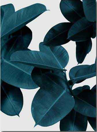 Modern Floral Print Wall Art | Rich Black Leaves
