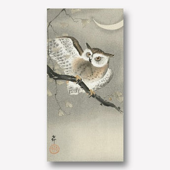 Ohara Koson -Long-eared owl in ginkgo
