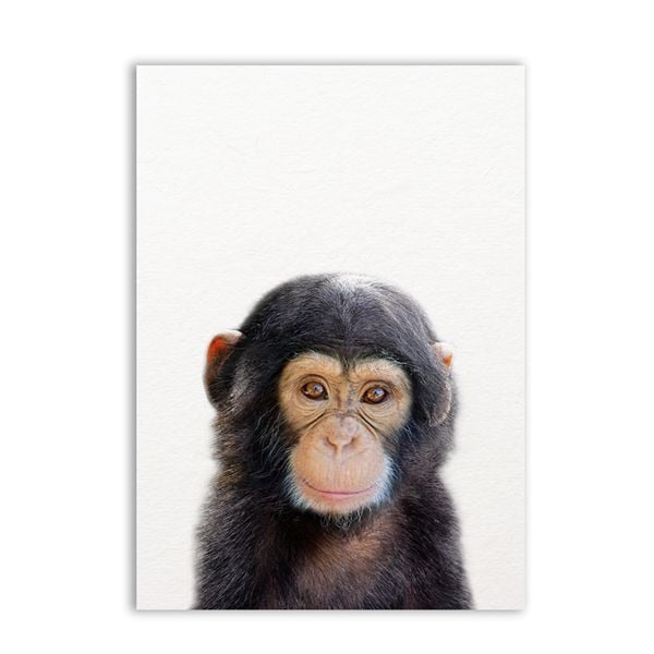 Cute safari animal Canvas Prints | www.wallart.biz