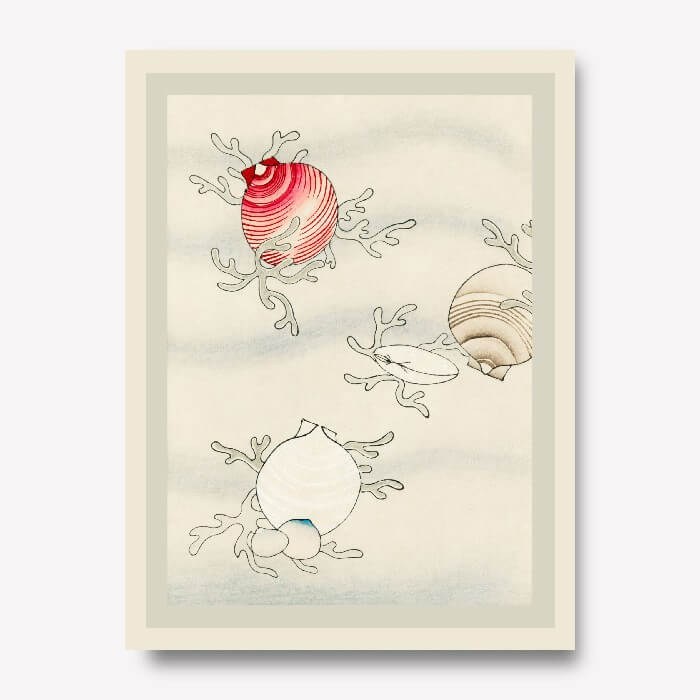 Seashells Wall Art by Watanabe Seitei | FREE USA SHIPPING | WallArt.Biz