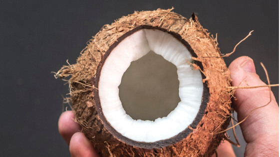 what's so good in coconut oil?