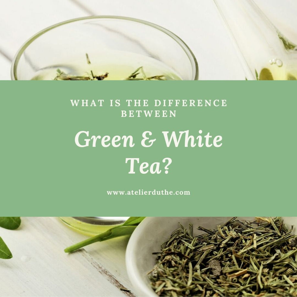 What is the difference between white and green teas