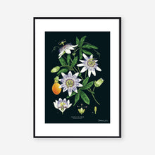 Load image into Gallery viewer, Passion Flower - Black - Art Print