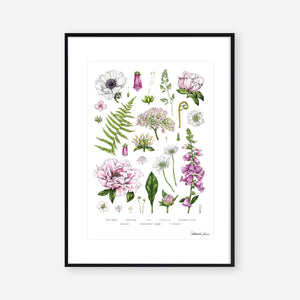 Botanical 'Summer Garden' White - Art Print