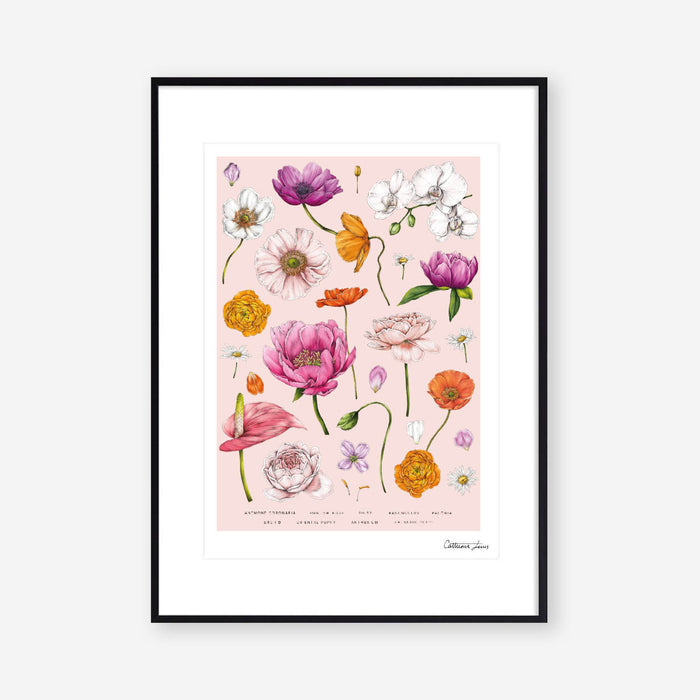 Botanical 'Floral Brights' - Art Print - SALE