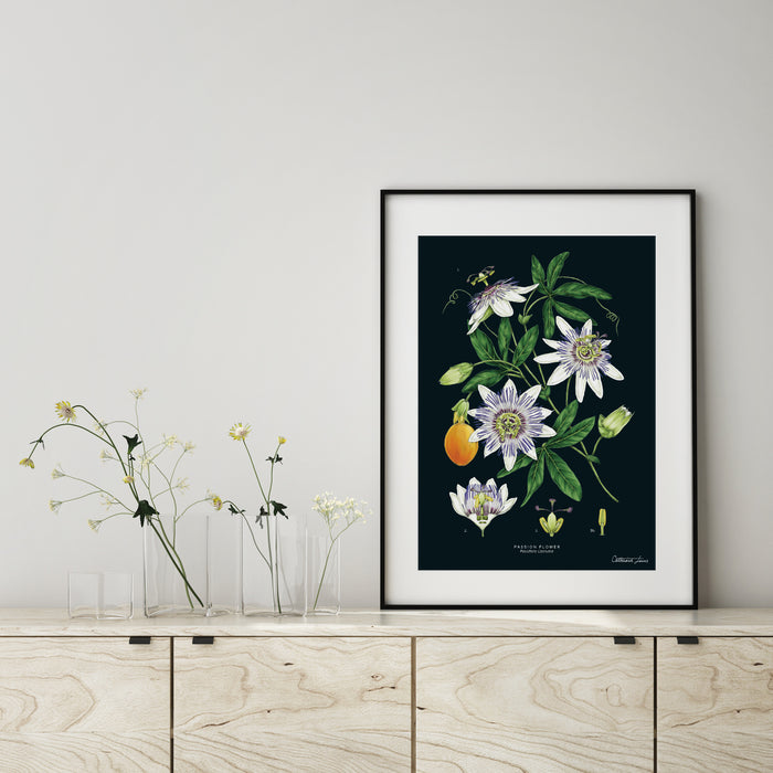 Passion Flower - Black - Art Print