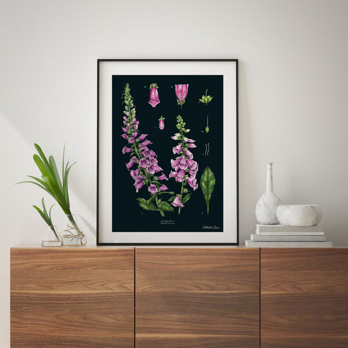 Foxglove - Black - Art Print
