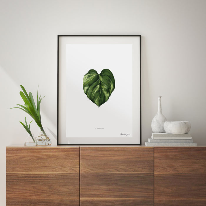 Golden Pothos - Art Print