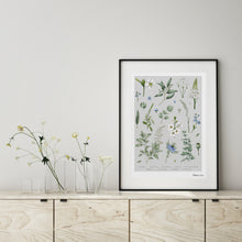 Load image into Gallery viewer, Botanical 'Ethereal' - Art Print
