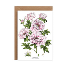 Load image into Gallery viewer, Botanical 'Tree Peony' Species Card