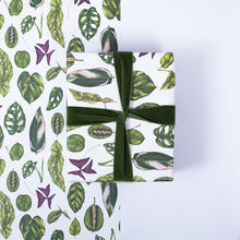 Load image into Gallery viewer, Houseplants - Gift Wrap