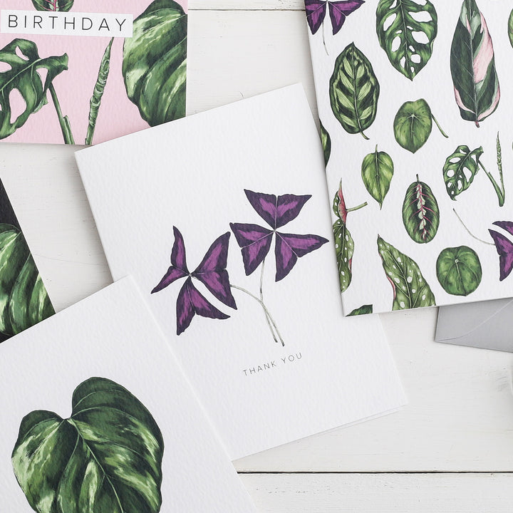 Houseplants 'Thank You' Card - SALE