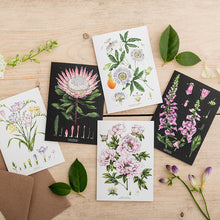 Load image into Gallery viewer, Botanical 'Passion Flower - White' Species Card