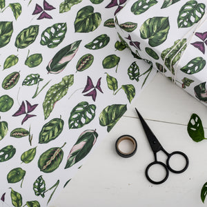 Houseplants - Gift Wrap
