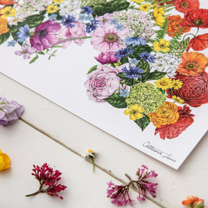 Botanical Rainbow - Art Print