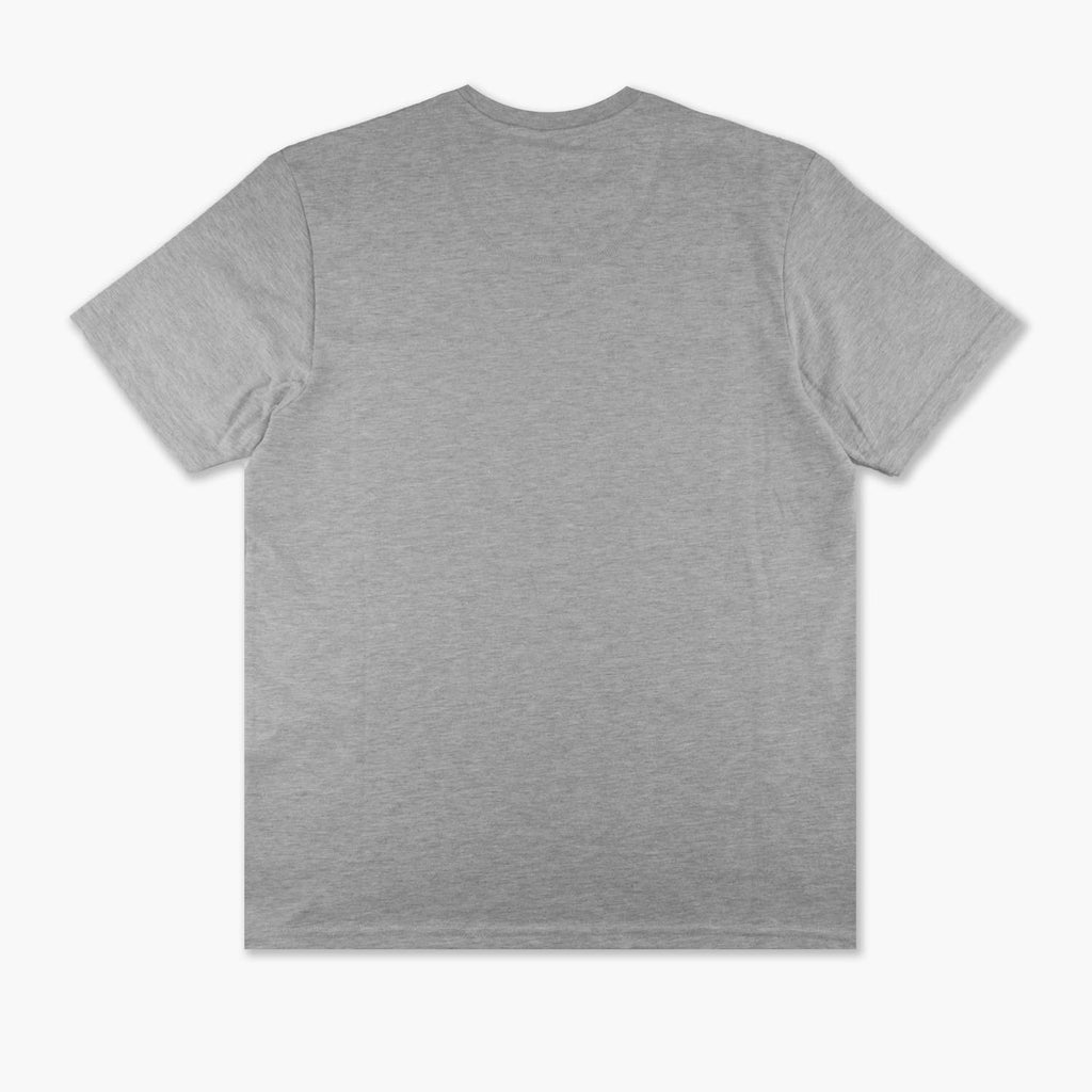 HELLY HANSEN CREW T-SHIRT - MATE