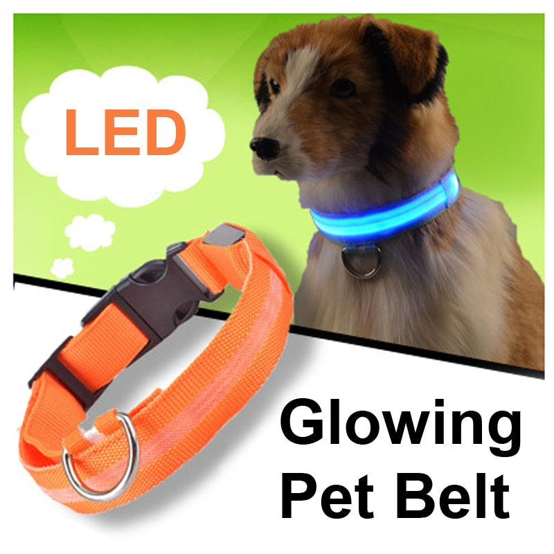 Pet Dog LED Collar For Cat Nylon Night Safety Anti-lost Light Up Flashing USB Collars Dogs Luminous Necklace Puppy Pet Supplies