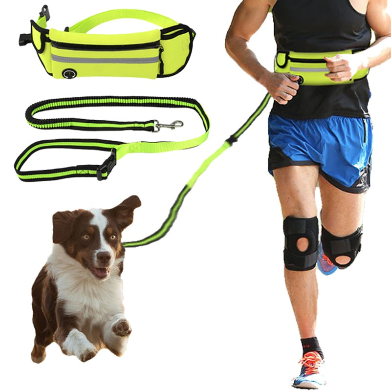 Elastic Hands Free Dog Running Leash