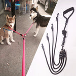 Nylon Double Leashes Detachable Pet Lead Climbing Foam Cotton Handle 1 Leash for 2 or 3 or 4 Dogs Small Dog Retraction Rope