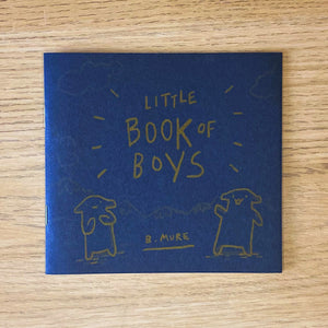 Little Book of Boys