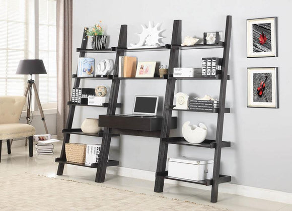 Twins Furniture Ladder Desk and Bookcase