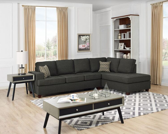Twins Furniture Sectional w/ Pull-Out Bed