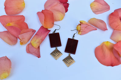 Carnelian and brass diamond geometric earrings.