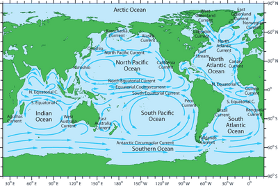 {FREE DISCUSSION GUIDE}  All About Oceans