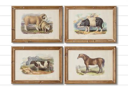 Framed Farm Animal Prints