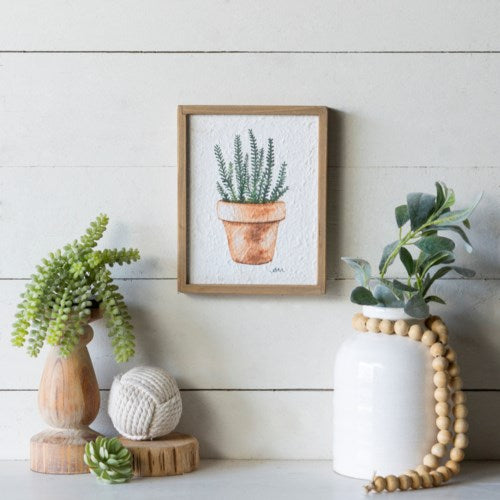 Framed Succulent Art No. 1