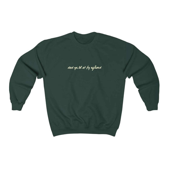 dod yn ôl at fy nghoed v2 sweatshirt - pet fetchers shop