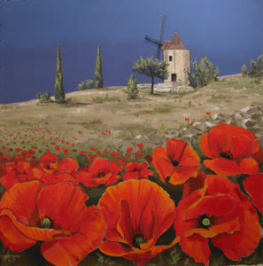 Red Poppies in Provence