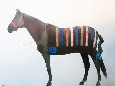 Striped Blanket Horse Canvas
