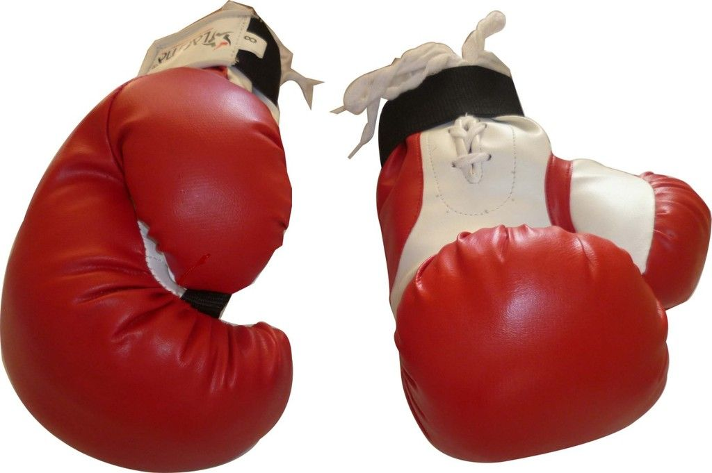 10oz Performance Bag Sparring Boxing Gloves Mitts Punch Kick Shield MMA Gym