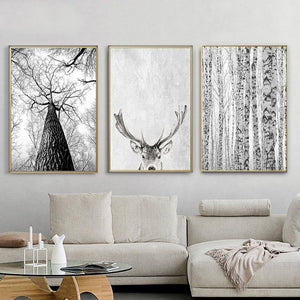 Grey Wash Woods Canvas