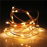 Copper Fairy Lights - Hop Decor
