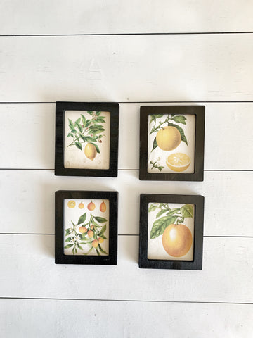 Mini Citrus Signs