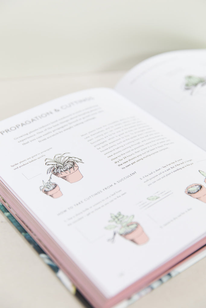 geo-fleur Book - Living with Plants