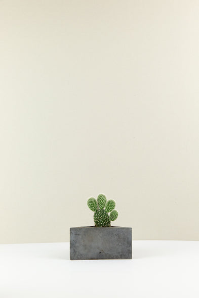 Triangle Concrete Plant Pot