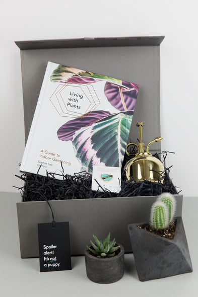 House Plant Killer Gift Box