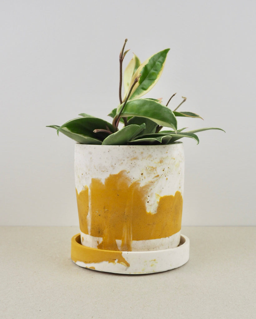 jesmonite cylinder plant pot