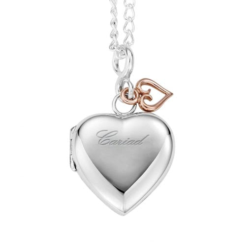 Silver & 9ct Gold Cariad Locket