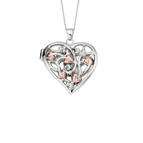 Silver & 9ct Gold Fairy Locket