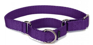 PetSafe Premier Martingale Deep Purple Pet Collar