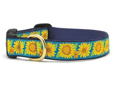 Up Country Sunflower Collars & Leads