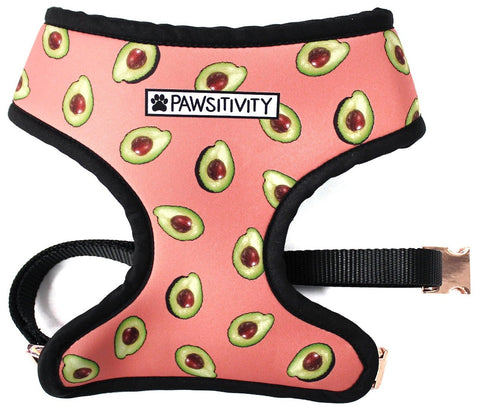 Pawsitivity's Avocado Reversible Harness