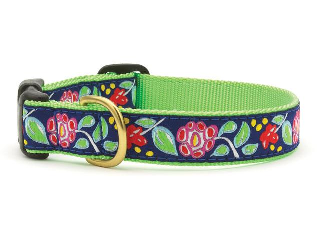 Up Country Posey Collars & Leads