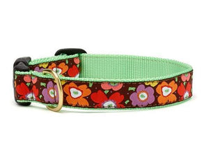 Up Country Mod Floral Collars & Leads